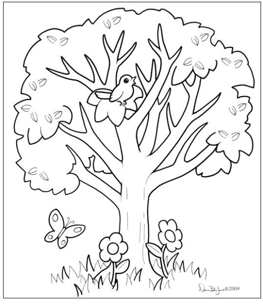 Divine Lote Tree