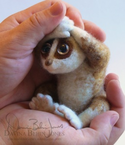 felted loris