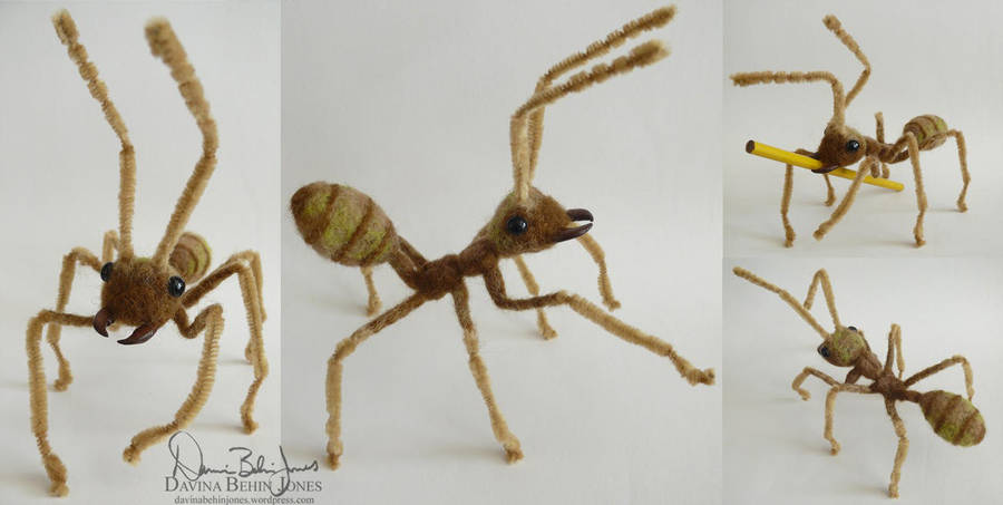 weaver_ant_by_familiaroddlings
