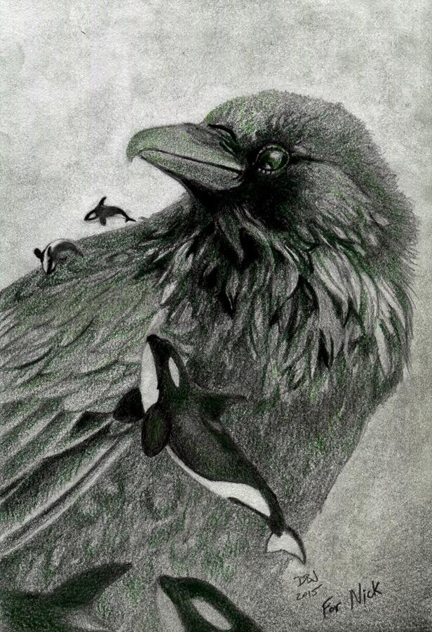 RavenOrcadA