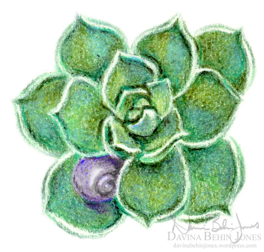 SucculentShell_sticker_web