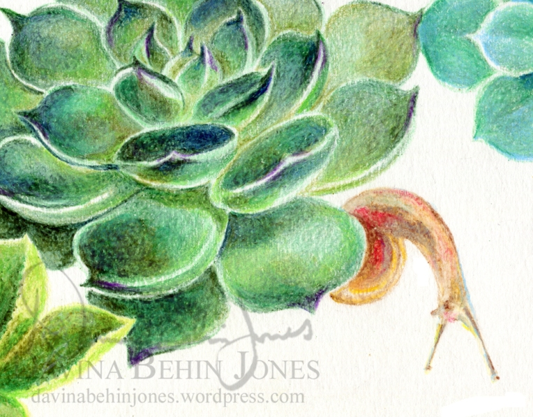 SucculentSnail_Invitation_detail