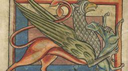 MedievalGriffin3_web